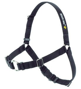 "SENSE-ation No-Pull Dog Harness - 3/4"" Wide Medium/Large"