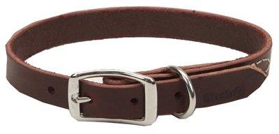 Coastal Pet 02106 B LAT20 Leather Dog Collar, 3/4 by 20-Inch ()