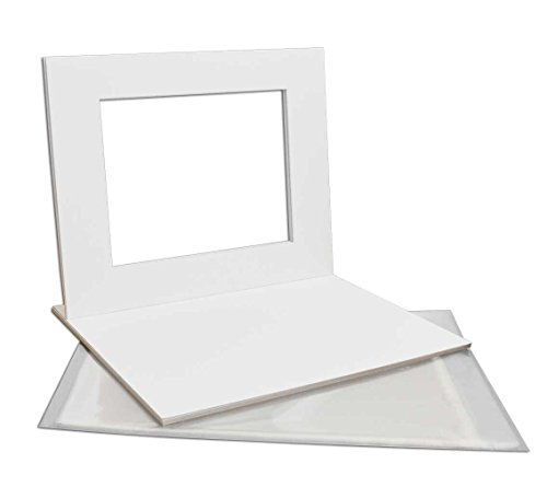 Golden State Art, Pack of 5 White Pre-Cut 16x20 Picture Mat for 11x14 Photo with White Core Bevel Cut Mattes Sets. Includes 5 High Premier Acid Free Mats & 5 Backing Board & 5 Clear Bags