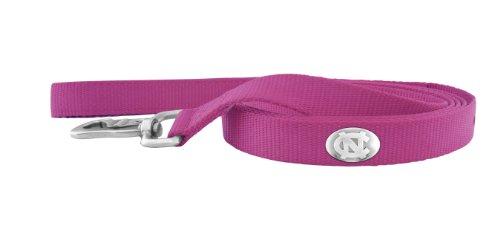 Zep-Pro Pink Nylon Concho Pet Lead, North Carolina Tar Heels, 6-Feet