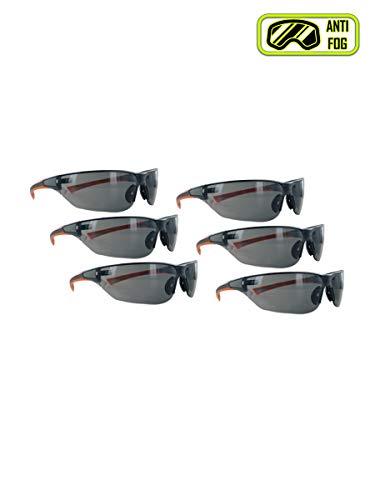 ANSI z87 Anti-Fog Safety Glasses (6 Pair)