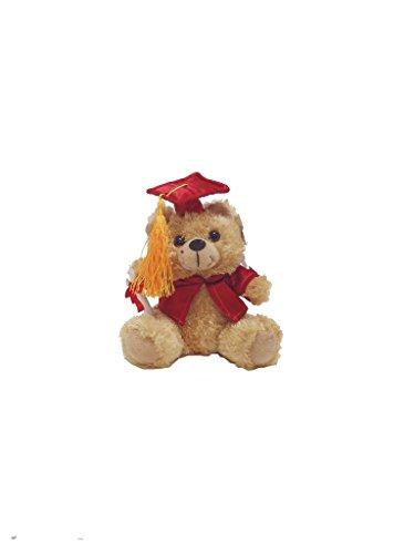 Graduation Bear - 6