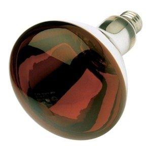 heat lamp 125 - 4