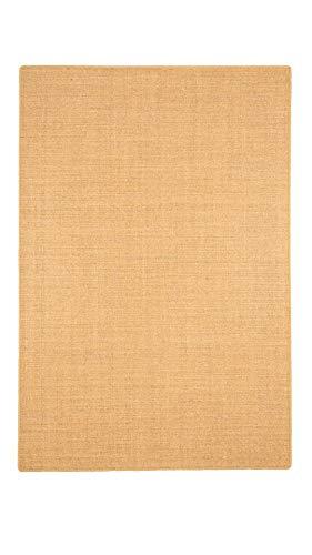 Astra Sisal Natur Teppich Nuss Nuss Nuss in 24 Größen B002HSDFK0 Teppiche b47068