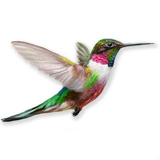 Anti-Collision Window Clings to Prevent Bird Strikes on Window Glass - Set of 4 Hummingbird Window Clings
