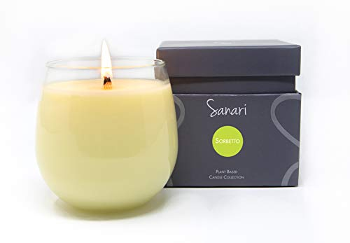 Sorbetto - Organic Aromatherapy Scented Candle 100% Certified Plant Based Essential Oils Blood Orange, Coconut, Vanilla Bean Infused in Organic Coconut Wax in Reusable Glass, Vegan, Non-GMO (8.5 ()