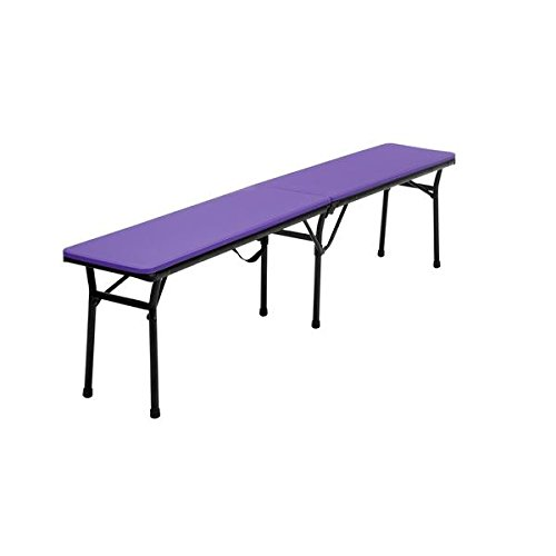 COSCO 6-foot Indoor/ Outdoor Center Fold Purple Tailgate Bench with Carrying Handle (Ballard Design Outdoor Furniture)