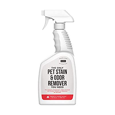 Natural Rapport Pet Stain Remover Carpet and Upholstery Cleaner Urine Odor Eliminator Spray for Pets (32 fl oz.)