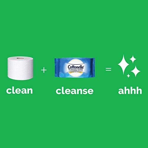 31XHA4T6PzL - Cottonelle GentlePlus Flushable Wet Wipes with Aloe & Vitamin E, 6 Packs, 42 Wipes per Pack (252 Wipes Total)