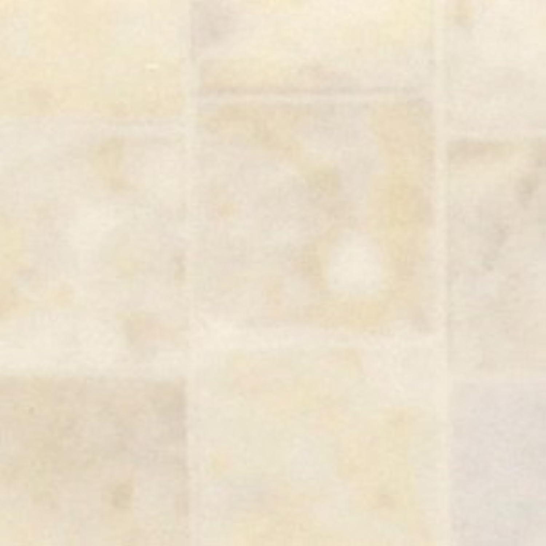 ゴールサークル説教折り畳み式 鉄製ヒッチキャリアカーゴ 【カーゴネット付き】