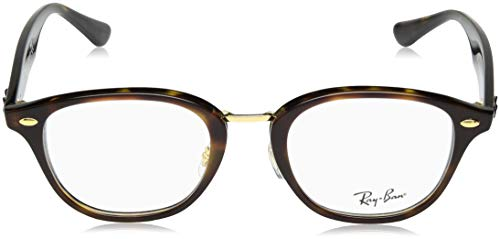 Eyeglasses Top Unisex Ray ban havana Havana Rx5355 Brown pTCtFtxw