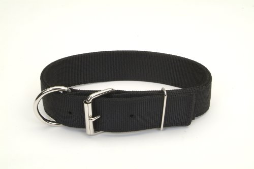 Nylon Double Ply Dog Collar (Macho Dog Double-Ply Nylon Collar with Roller Buckle)