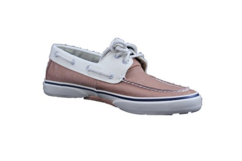Drizza Sperry Lt Marrone / Crema Sneaker Herren