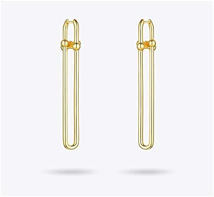 N/N Ohrring Geometrische Form Tropfen Ohrringe Für Frauen Accessoires Gold Farbe Long Dangle Earings Modeschmuck