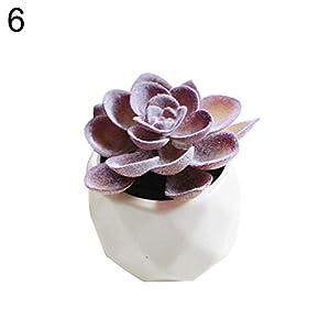 XKSIKjian's Artificial Plants, 1Pc Artificial Succulent Bonsai DIY Garden Office Decor Flowers, Fakeflowers Bouquet Wedding Party Home Decoration - 6# 29