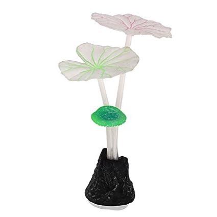Amazon.com : eDealMax Planta acuario de silicona Paisajismo acuático Agua Coral ornamento, 11cm : Pet Supplies