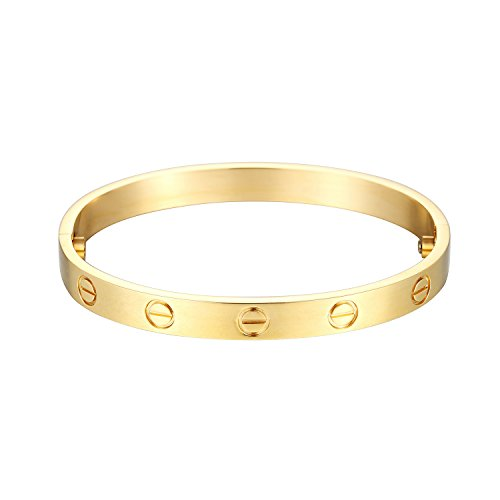 Z.RACLE Love Bangle Bracelet Stainless Steel Screw - Best Gift Love - 6.3IN Gold by Z.RACLE (Image #1)'