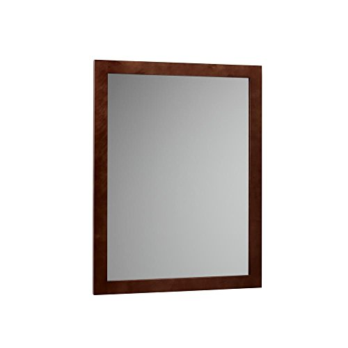 Ronbow Essentials Contemporary 24 in. W x 32 in. H Framed Mirror in Dark ()