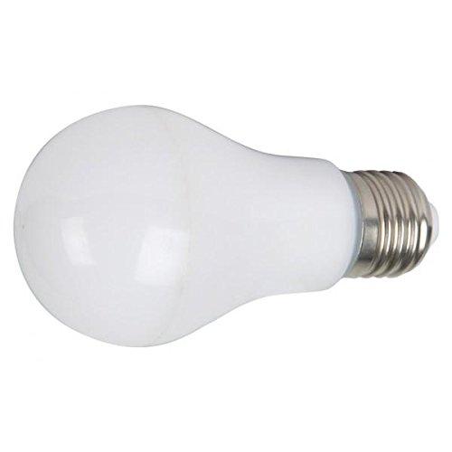Duolec 9160C321 - Bombilla LED estándar 10W E27 Blanco frío: Amazon.es: Hogar