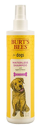 Burt's Bees for Dogs All-Natural Waterless Shampoo Spray with Apple & Honey | Best Waterless Shampoo Spray for All Dogs and Puppies, 10 (Believe Spray Fragrance)