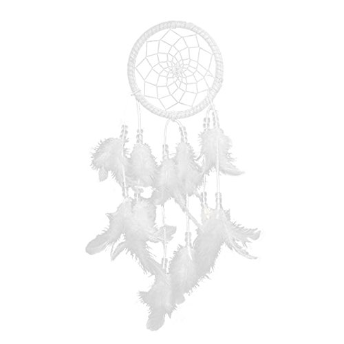 Soledi Dream Catcher Handmade Circular Net With feathers Wall Hanging Decoration Ornament (White)