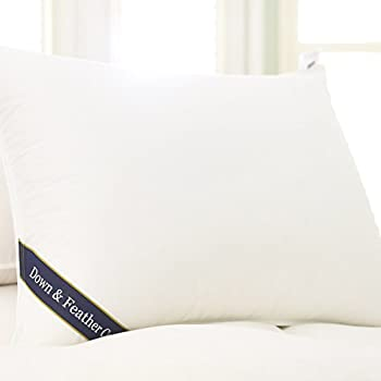 Amazon Com Down Amp Feather Co Snuggle Soft Down Pillow