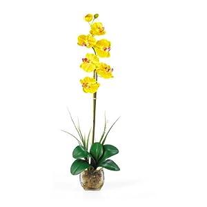 Nearly Natural 1104-YL Single Phalaenopsis Liquid Illusion Silk Flower Arrangement, Yellow 34