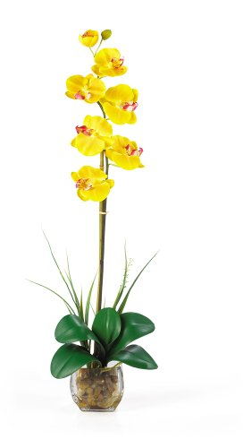 Flower Yellow Glass (Nearly Natural 1104-YL Single Phalaenopsis Liquid Illusion Silk Flower Arrangement, Yellow)