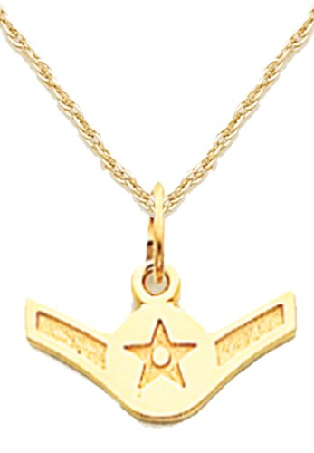 (US Jewels And Gems 14k Yellow Gold US Air Force Airman Military Pendant 1.6mm Rope Chain Necklace)