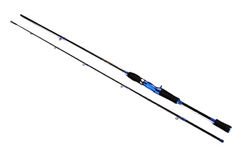 cheap casting rods - 2