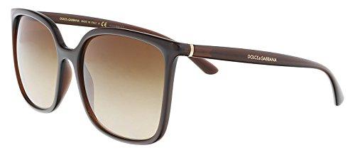 Dolce & Gabbana DG6112 315913 Transparent Brown Square Sunglasses for Womens