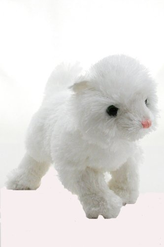 KooKeys Persian Cat