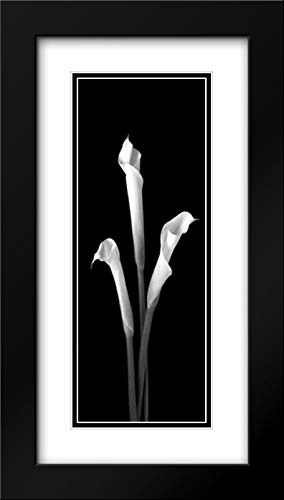 Calla Lilies on Black II 11x24 Black Modern Frame and Double Matted Art Print by Jones, Robert