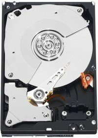 WESTERN DIGITAL WD1003FZEX (7001) Disco Duro Western Digital Black WD1003FZEX - 3.5'' - 1TB - SATA3 - 6GB