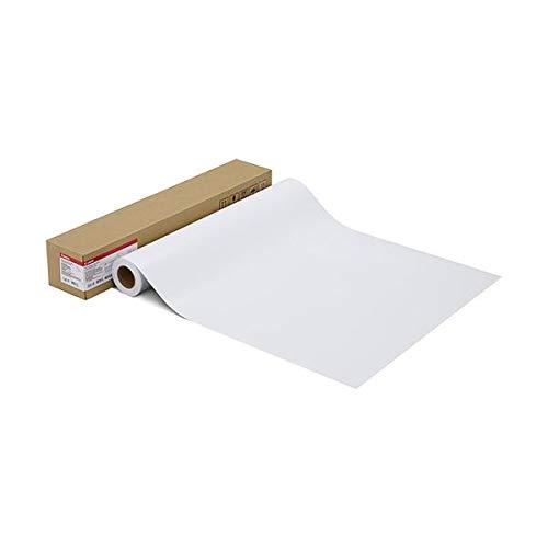 キヤノン 写真用紙 微粒面光沢 ラスター260g LFM-SGLU/42/260 42インチ1067mm×30.5m 1108C001 1本 AV デジモノ プリンター OA プリンタ用紙 14067381 [並行輸入品] B07MNV944B