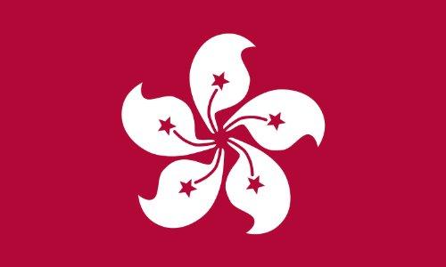 Valley Forge Flag 3-Foot by 5-Foot Nylon Hong Kong Flag