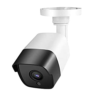 【𝐁𝐥𝐚𝐜𝐤 𝐅𝐫𝐢𝐝𝐚𝒚 𝐋𝐨𝒘𝐞𝐬𝐭 𝐏𝐫𝐢𝐜𝐞】 Surveillance System Outdoor DVR Security Camera Waterproof CCTV Camera Wireless Security Cat Cat Monitor Outdoor Camera Dog Business(4MP NTSC Format)