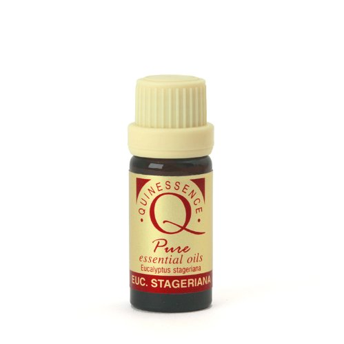 eucalyptus-staigeriana-essential-oil-10ml-by-quinessence-aromatherapy