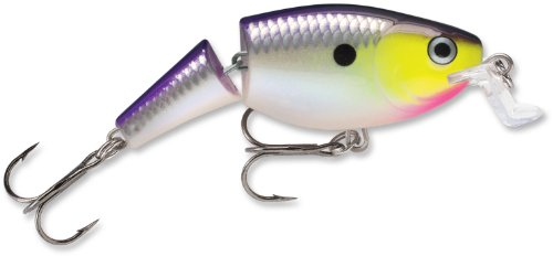 Rapala Jointed Shallow Shad Rap 5 Fishing Lure, Purple Descent, 2-Inch, Outdoor Stuffs