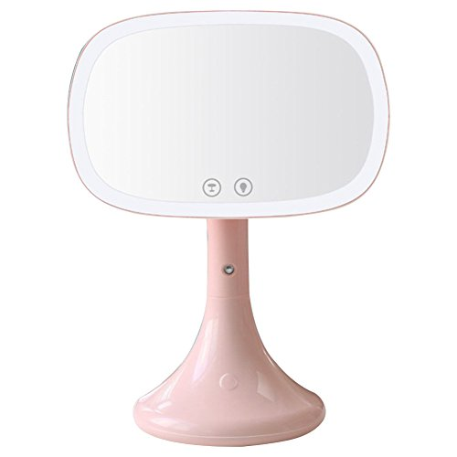 Led lighted makeup mirror,Moisturizing spray rechargeable vanity mirror Desk lamp Touch screen Table cosmetic mirror-Pink by