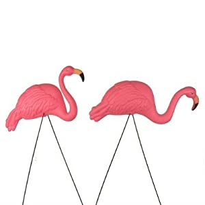 Amazoncom Bright Pink Flamingo Yard Ornament 2pack Home Kitchen