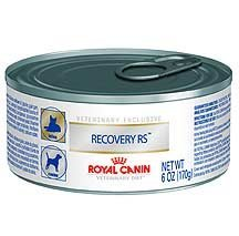 Royal Canin Recovery Rs Food For Dogs And Cats 24 5 8 Oz