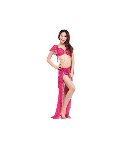 Belly Dance Costume (Bellydance Bra+Shiny Skirts) Bollywood Dance Costumes Dress,Rose,One Size -