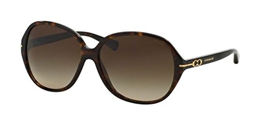 Coach L589 Bailey Sunglasses HC8118F 500113 Tortoise Brown Gradient 60 14 - Bailey Sunglasses