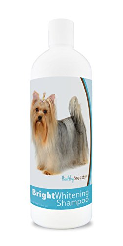 Healthy Breeds Dog Shampoo for White Dogs for Yorkshire Terrier - for White, Lighter Fur - Over 150 Breeds - 12 oz - with Oatmeal for Dry, Itchy, Sensitive, Skin - Moisturizes, Nourishes Coat