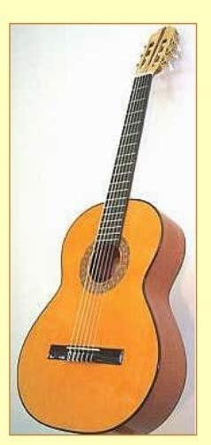 GUITARRA ESPAÑOLA: Amazon.es: Instrumentos musicales