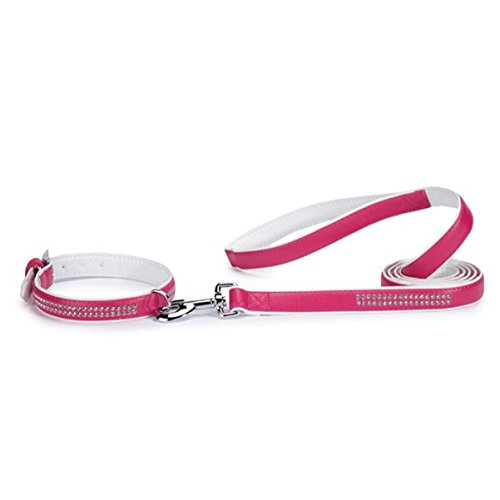 (East Side Collection Sparkle Gemstone Faux Leather Dog Leash, 6-Feet x 1-Inch Lead, Raspberry)