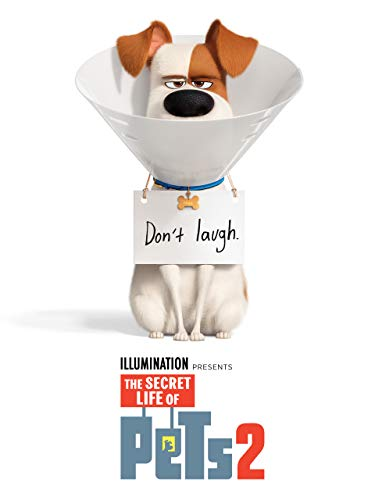 The Secret Life of Pets 2 (Pets)