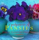 A Potpourri Of Pansies