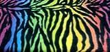 ArtOFabric Fleece Printed Animal Print Rainbow Zebra Throw Blanket 58 Inch By 72 Inch